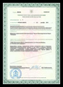 Лицензия на осуществление видов деятельности